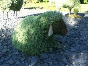 Un des moutons de Bach