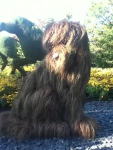 Le chien de l'homme qui plantait des arbres