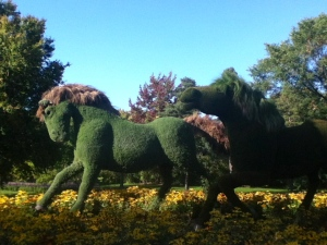 Magnifiques chevaux en mosaïques